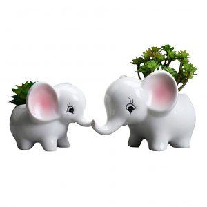 Macetas para flores y plantas de elefantes