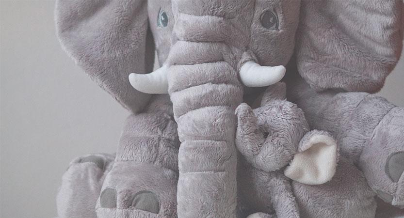 El niño quiere un Elefante de Peluche